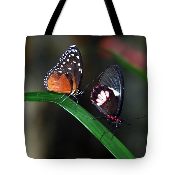 Butterflies Tote Bag by Skip Willits