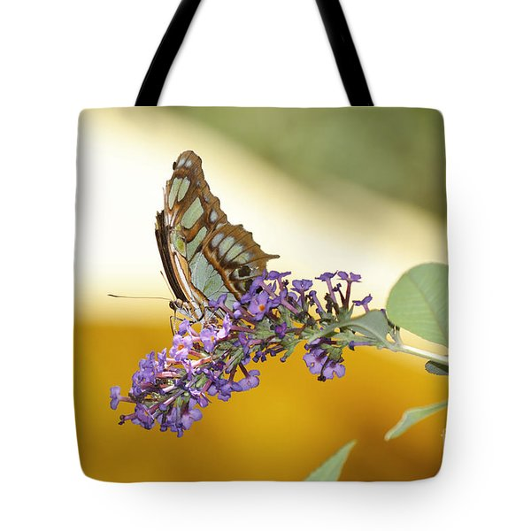 Butterfly Lavender Branch Tote Bag by Andrea Hazel Ihlefeld