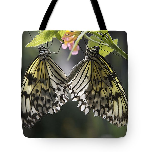 Butterfly Duo Tote Bag by Eunice Gibb