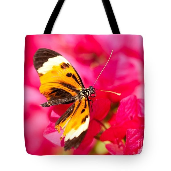 Tote Bag featuring the photograph Butterfly by Les Palenik