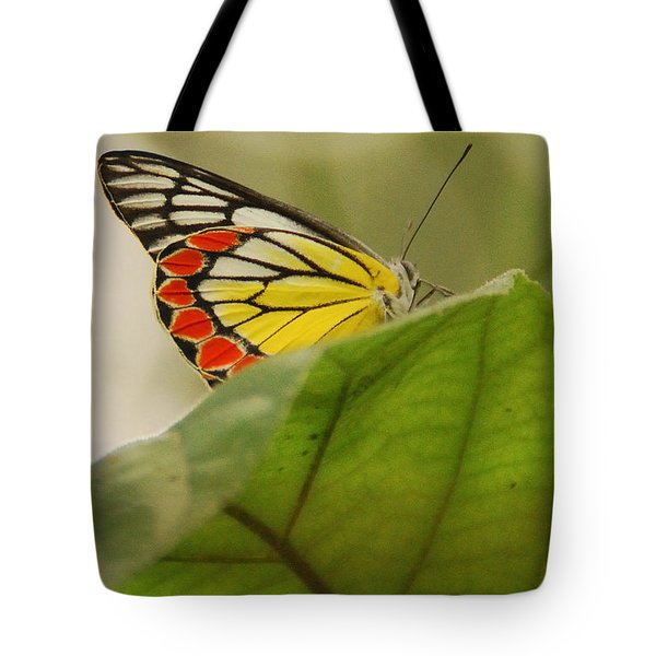Tote Bag featuring the photograph Butterfly Resting by Fotosas Photography