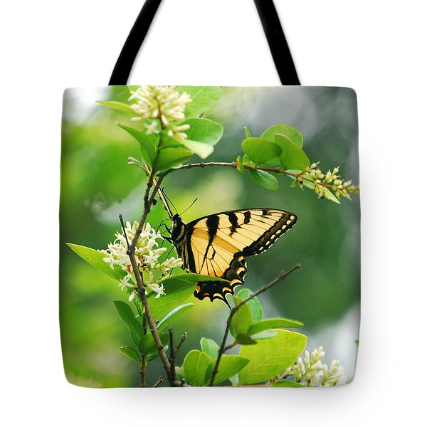 Tote Bag featuring the photograph Butterfly Tiger Swallow by Peggy Franz