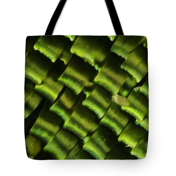 Butterfly Wing Scales Tote Bag by Raul Gonzalez Perez