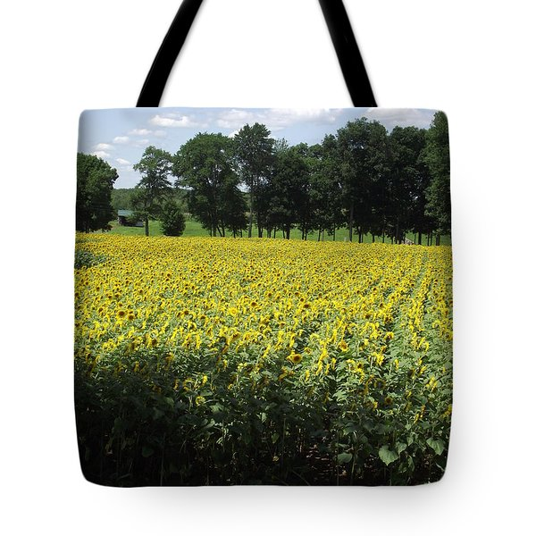 Buttonwood Farm Tote Bag