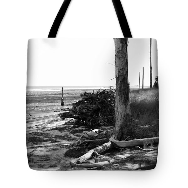 Bwhurricane Damage Tote Bag by Judy Hall-Folde