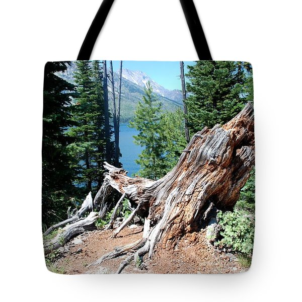 Tote Bag featuring the photograph By Jenny Lake by Dany Lison