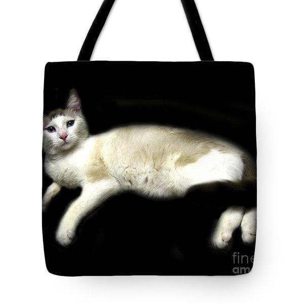 C-a-t In Repose  Tote Bag by Peter Piatt