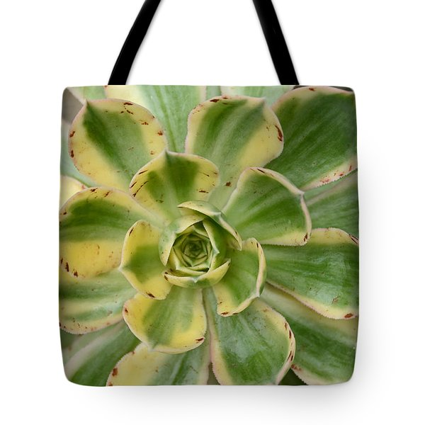 Cactus 63 Tote Bag