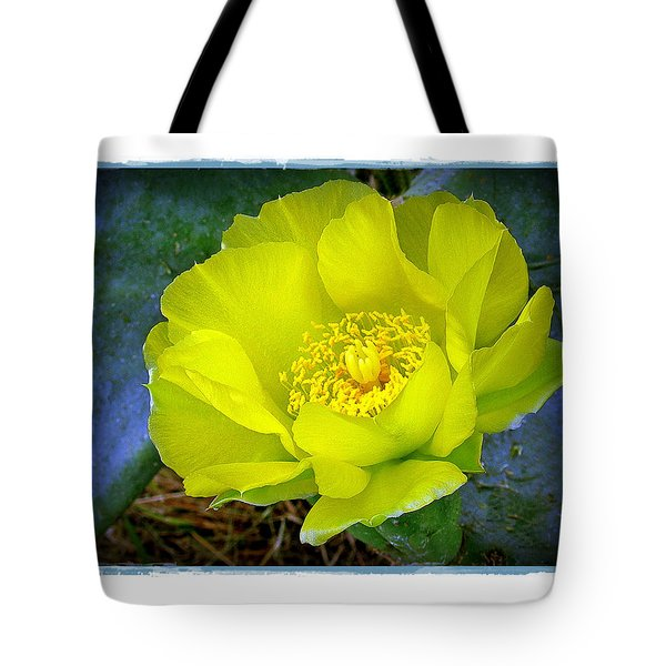 Cactus Flower Tote Bag by Judi Bagwell
