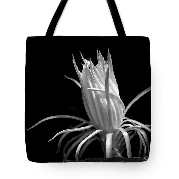 Cactus Flower Tote Bag by Sabrina L Ryan