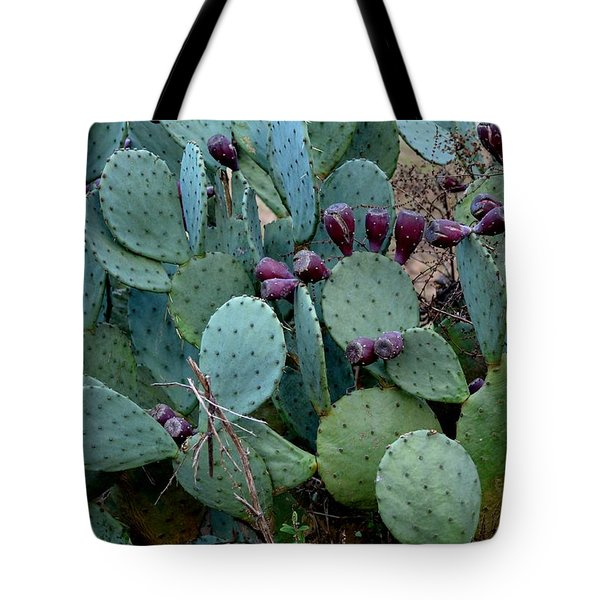 Tote Bag featuring the photograph Cactus Plants by Maria Urso