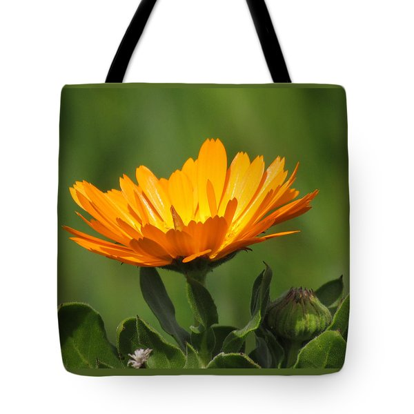 Calendula Bloom Tote Bag