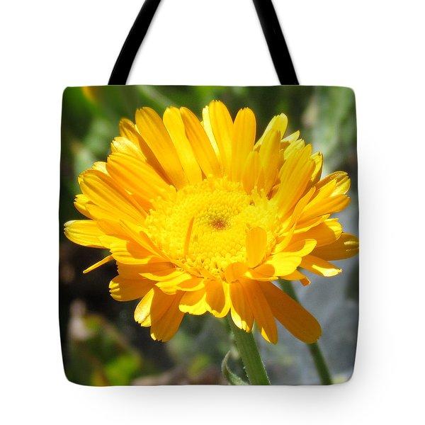 Calendula Blossom Tote Bag