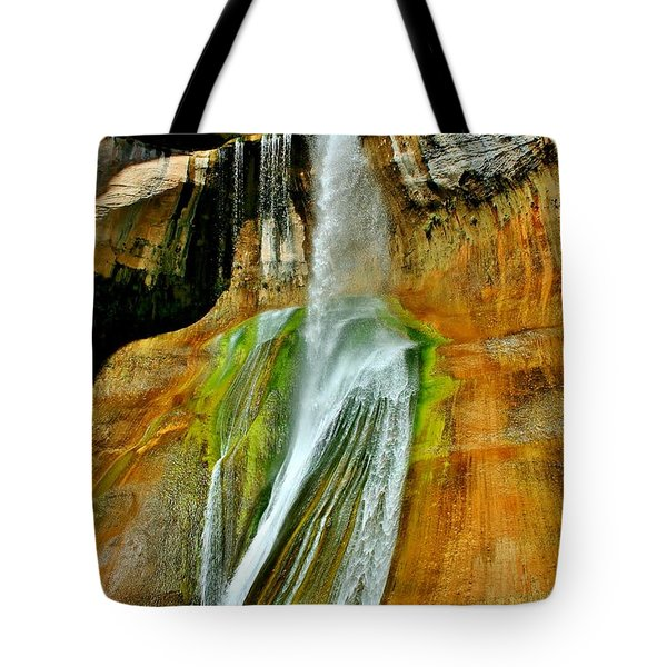 Calf Creek Falls II Tote Bag