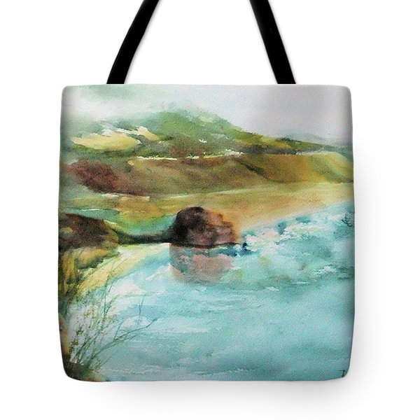 Tote Bag featuring the painting California Dreaming by Debbie Lewis