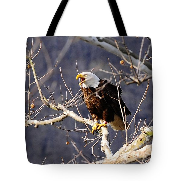 Tote Bag featuring the photograph Calling For His Mate by Randall Branham