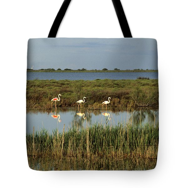 Camargue.etang Of Vacarres Tote Bag