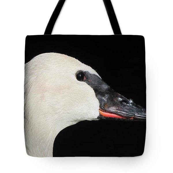 Trumpeter Swan Tote Bag by Maciek Froncisz