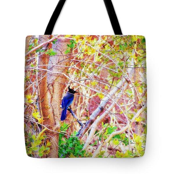 Canyon Jay  Tote Bag by Clarice  Lakota