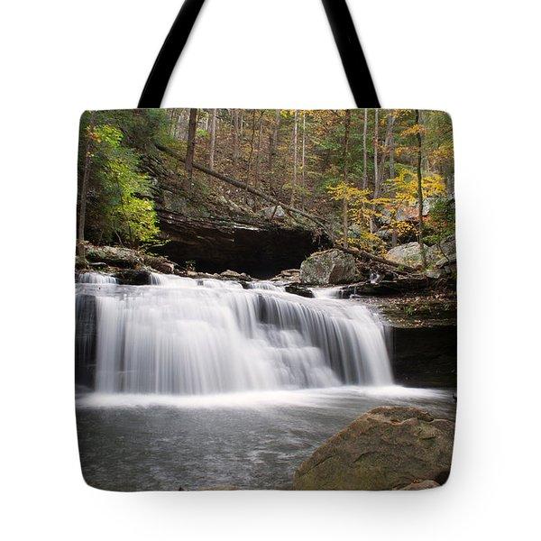 Canyon Waterfall Tote Bag by David Troxel