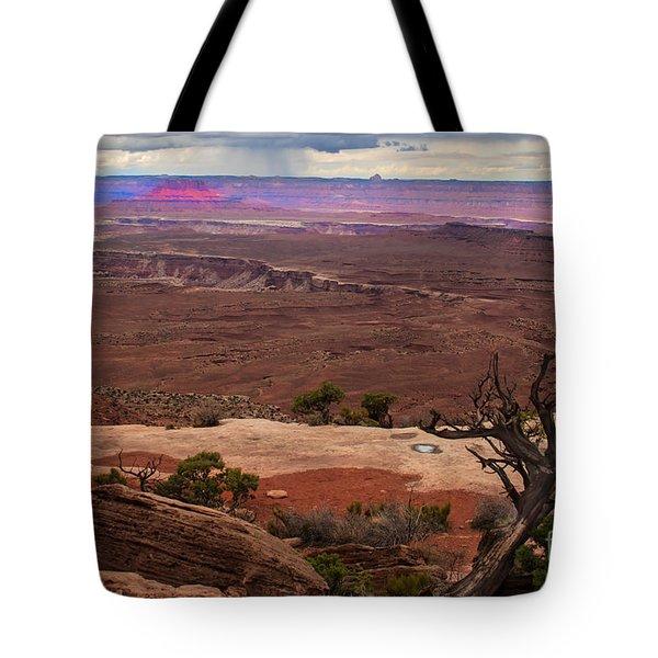 Canyonland Overlook Tote Bag by Robert Bales