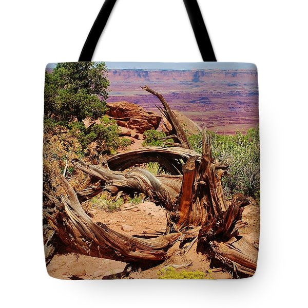 Tote Bag featuring the photograph Canyonlands 2 by Dany Lison