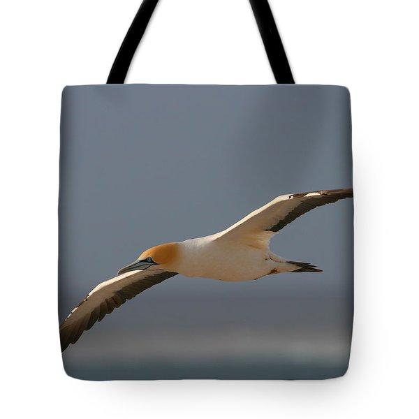 Cape Gannet In Flight Tote Bag by Bruce J Robinson