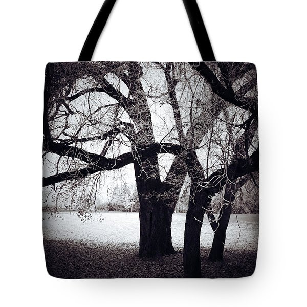 Captions Cradle  Tote Bag by Jerry Cordeiro