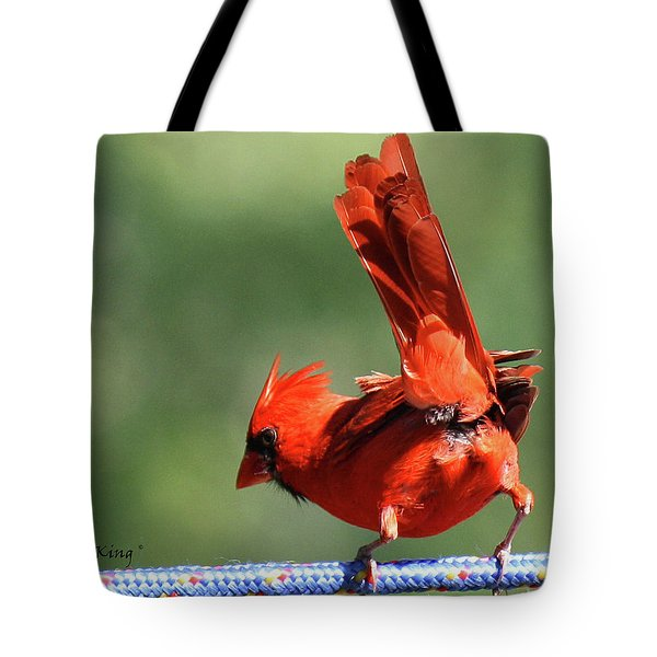 Cardinal-a Picture Is Worth A Thousand Words Tote Bag