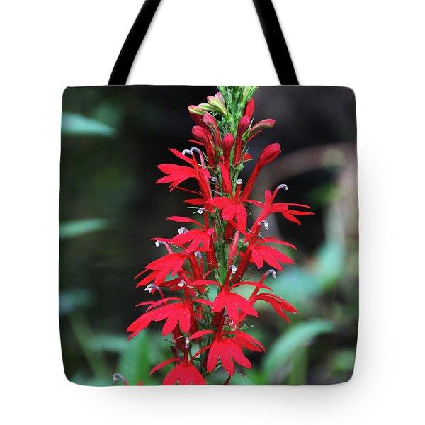 Cardinal Flower Tote Bag