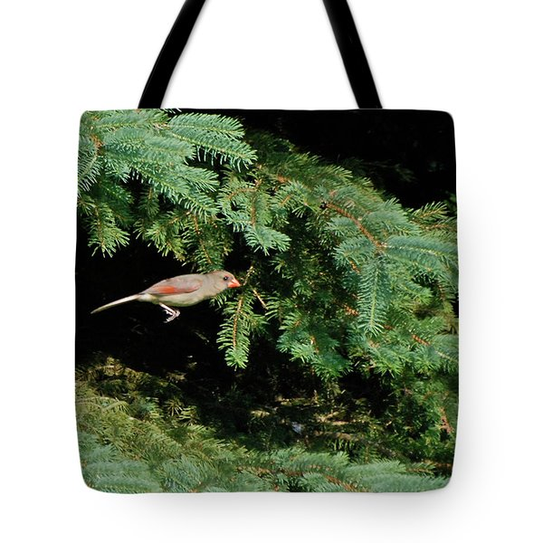 Tote Bag featuring the photograph Cardinal Just A Hop Away by Thomas Woolworth