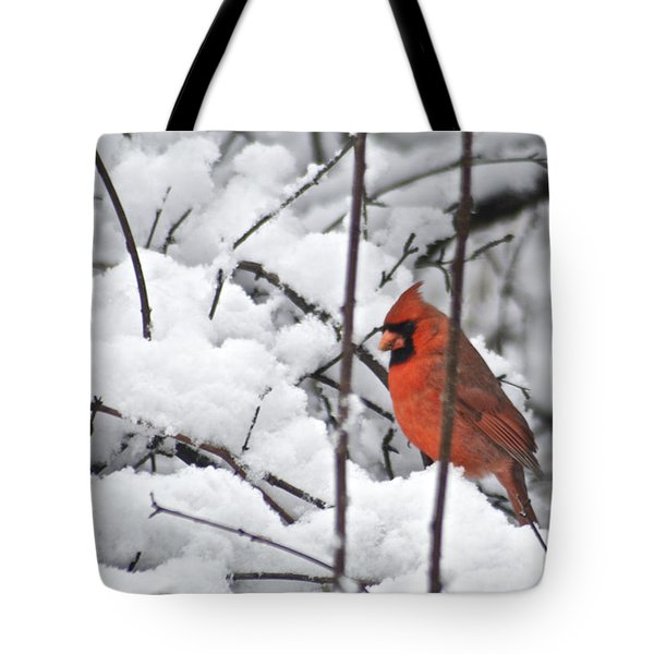 Cardinal Male 3669 Tote Bag by Michael Peychich