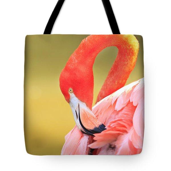 Caribbean Flamingo Phoenicopterus Rube Tote Bag by Stuart Westmorland
