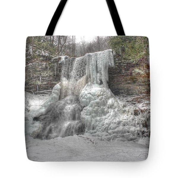 Cascades In Winter 1 Tote Bag by Dan Stone