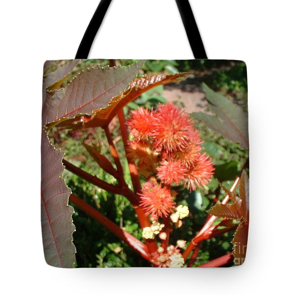 Castor Tote Bag by Mark Robbins