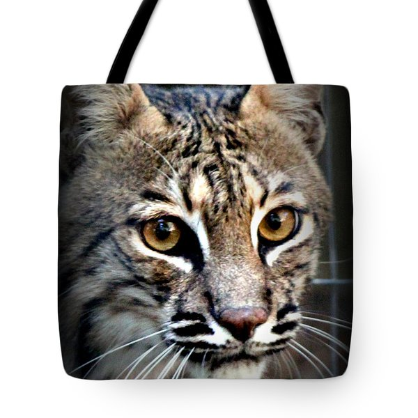 Cat Fever Tote Bag by Kathy  White