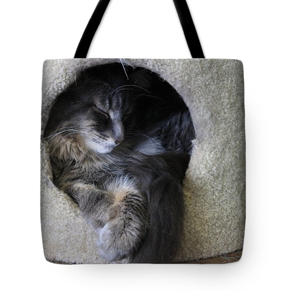 Cat In A Hole Tote Bag