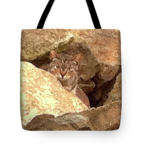 Cat On The Rocks Tote Bag