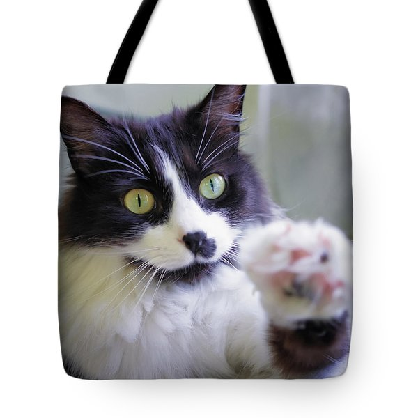 Cat Reaches For Camera Tote Bag by Lori Coleman