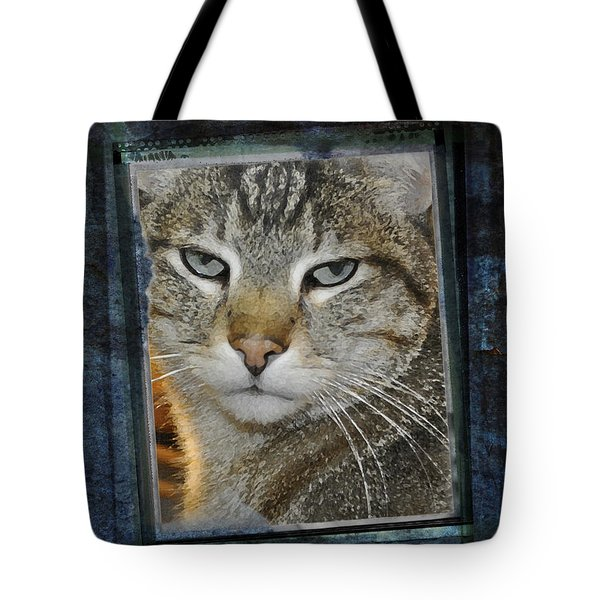 Cat Through A Tiny Window Tote Bag by Mary Machare