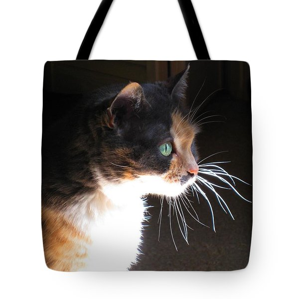 Tote Bag featuring the photograph Cat Whiskers by Sue Halstenberg