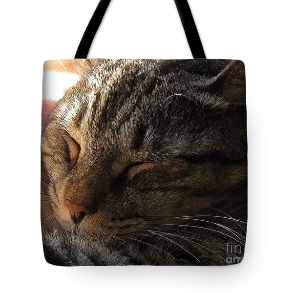 Catnap Tote Bag by Dale   Ford
