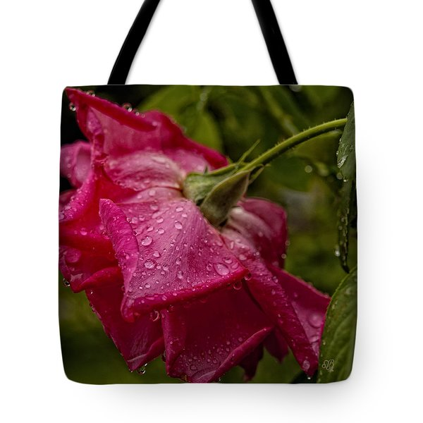 Caught In The Rain Tote Bag by Barbara Middleton