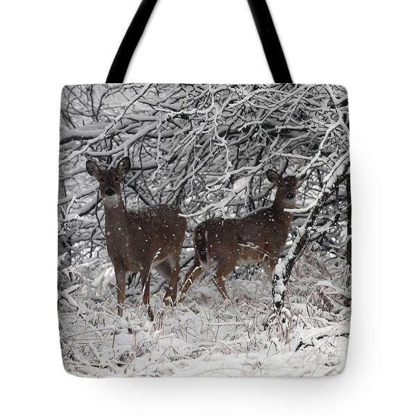 Tote Bag featuring the photograph Caught In The Snow Storm by Elizabeth Winter