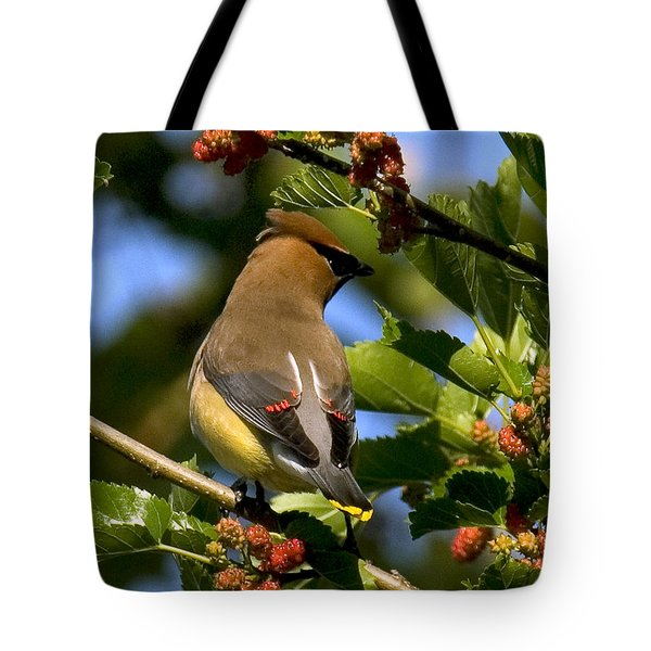 Tote Bag featuring the photograph Cedar Waxwing Dsb056 by Gerry Gantt