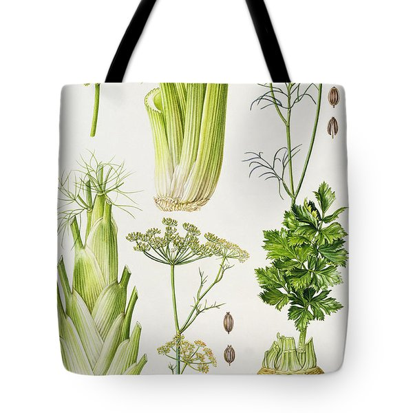 Celery - Fennel - Dill And Celeriac  Tote Bag by Elizabeth Rice