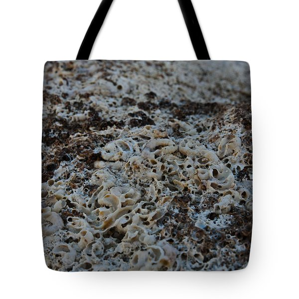 Tote Bag featuring the photograph Cemetery Clams by Michael Goyberg