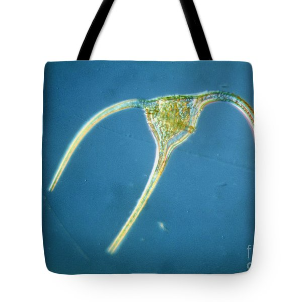 Ceratium Tripos Tote Bag by Eric Grave