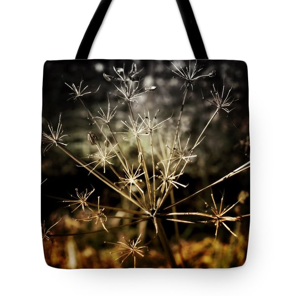 Changes Tote Bag by Ellen Heaverlo