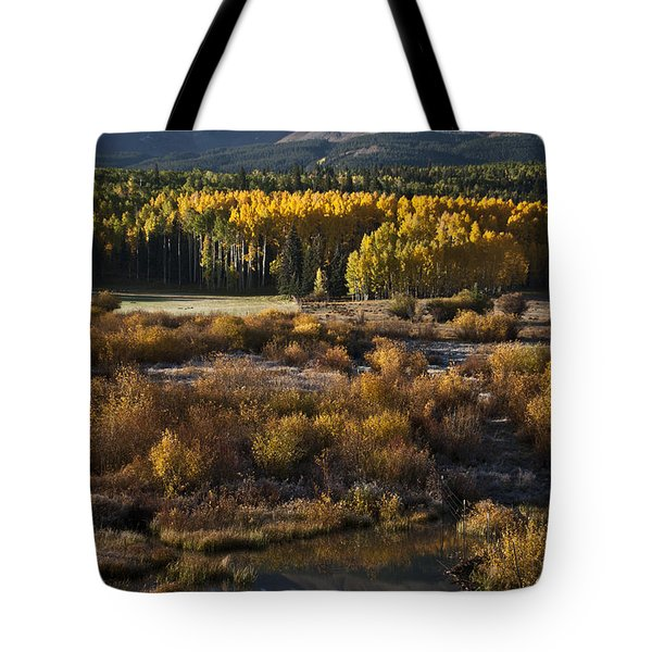 Changing Season Tote Bag by Jeff Kolker